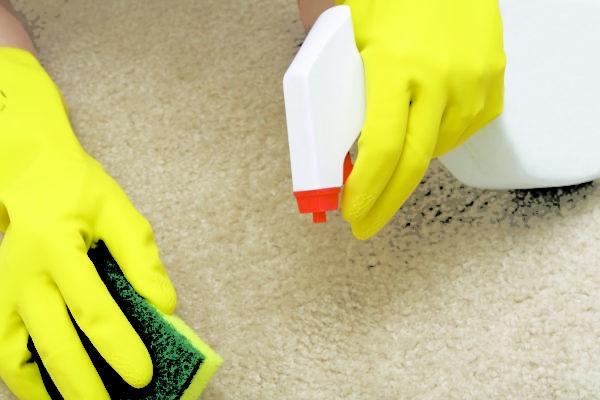 Чистка в домашних условиях пятен у ковров