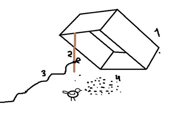 Ловушка для ворон своими руками 71