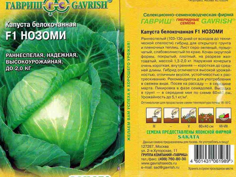 Савойская капуста выращивание отзывы 80